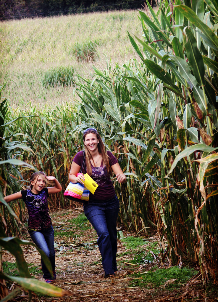 Holiday World Corn Maze